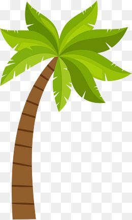 Cartoon Coconut Tree Pattern, Coconut Clipart, Tree Clipart
