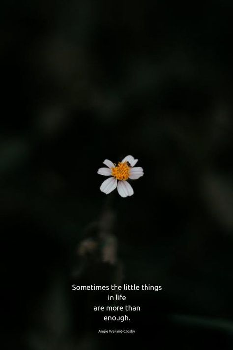 """quotes for the soul 