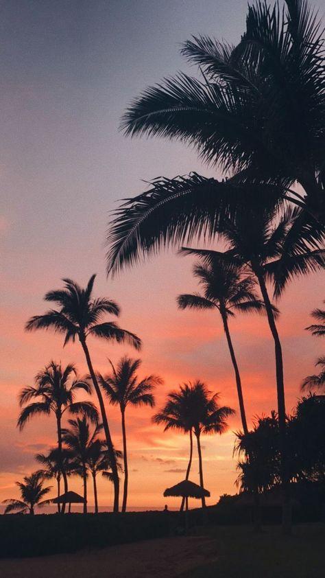 ✰ ig: ✰✰ ::… Klicken Sie hier, um das Hintergrundbild für den Sommer herunterzuladen. Downloa... #downloadcutewallpapers ✰ ig: ✰✰ ::… Klicken Sie hier, um das Sommer-Hintergrundbild herunterzuladen. Sommer-Hintergrundbild herunterladen: ✰ ig: ✰✰ Here...  #das #den #Download #für #herunterzuladen #hier #Hintergrundbild #Klicken #sie #Sommer #SUMMER #wallp