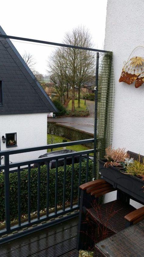 Aufschiebbares Katzennetz Fur Balkon Katzennetze Nrw Der Katzennetz Profi Aufsteckbares Katzennetz Fur Balkon Ka In 2020 Balcony Decor Cat Proof Balcony Cats