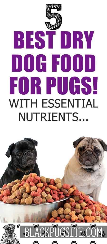 5 Of The Best Dry Dog Food For Senior Pugs Buyers Guide In 2020