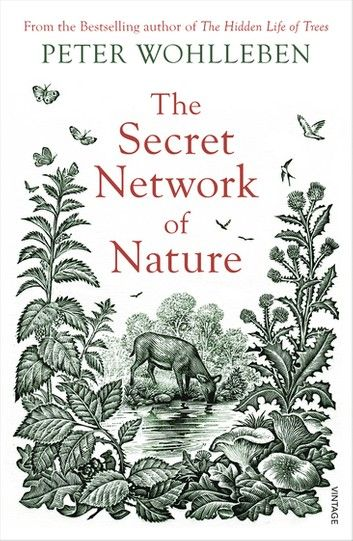 Buy The Secret Network of Nature: The Delicate Balance of All Living Things by Peter Wohlleben and Read this Book on Kobo's Free Apps. Discover Kobo's Vast Collection of Ebooks and Audiobooks Today - Over 4 Million Titles! Free Reading, Reading Lists, Book Lists, Penguin Books, Got Books, Books To Read, Latest Scientific Discoveries, Thing 1, Book Photography