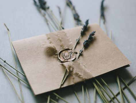Olive Branch Wax Seal Kit