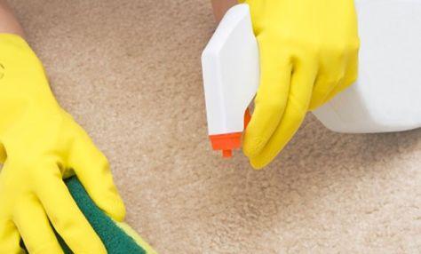 I tappeti raccolgono macchie a volontà e quando si puliscono si rischia sempre di rovinarli irrimediabilmente! Come fare? Ci sono tanti modi diversi per far tornare a splendere i propri tappeti senza rischiare di doverli buttare via per sempre! Innanzitutto buona regola è passare periodicamente l'aspirapolvere sul tappeto o togliere la polvere in eccesso con un  … Continued