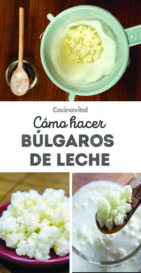 Como hacer bulgaros (kefir) de leche