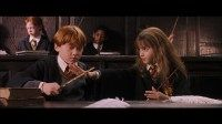Harry Potter and the Sorcerer's Stone (2001) - Movie- Screencaps.com