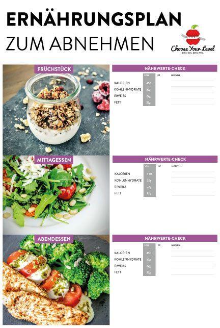 gesunde ernährung plan abnehmen kostenlos