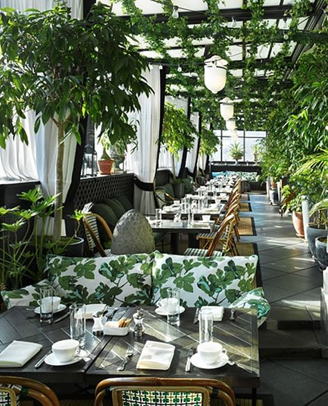 Lovin the greenhouse vibe, wish I could have lunch there!