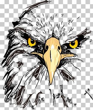 Eagle Png Images Eagle Clipart Free Download Eagle Drawing Drawings Art Drawings Sketches Simple