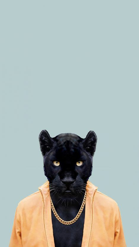 Black Panther Iphone Wallpaper Iphone Wallpapers Black Panther Hd Wallpaper Panther Pictures Black Jaguar Animal