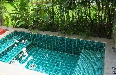 azulejo contratante con vegetación dentro de un mismo espacio, con alta felicidad de limpieza