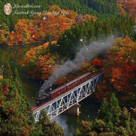 Tren Orman Reisefotos Alte Zuge Herbstlandschaft