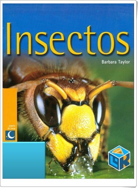 que es un insecto pdf