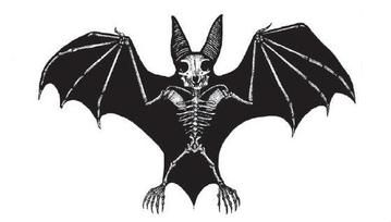 Waterproof Temporary Fake Tattoo Stickers Black Bat Skull Punk Design Body Art Make Up Tools