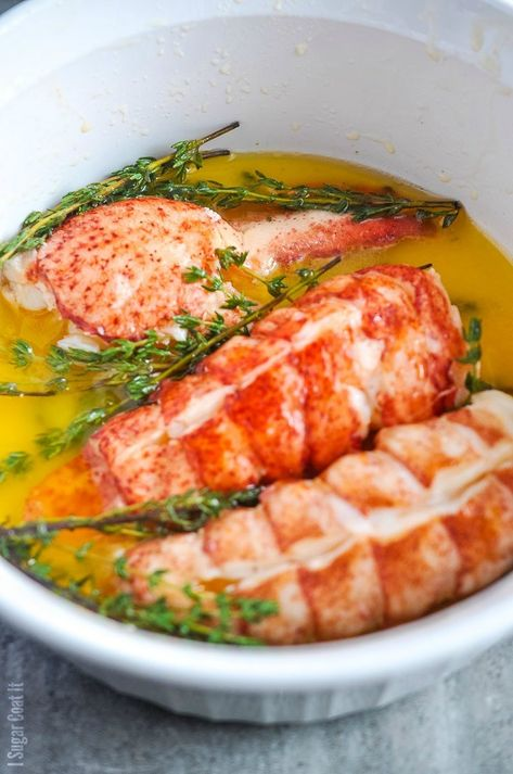 Succulent Sous Vide Poached Lobster - I Sugar Coat It How to make the most flavourful, Succulent Sous Vide Poached Lobster to add to your favourite lobster dishes! Lobster Dishes, Lobster Recipes, Fish Dishes, Seafood Dishes, Fish Recipes, Seafood Recipes, Dinner Recipes, Cooking Recipes, Lobster Food