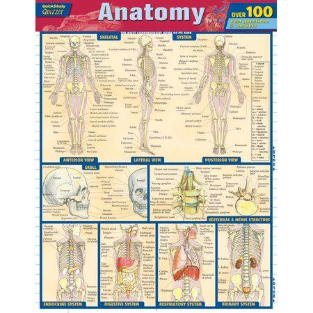 Anatomy Quizzer Walmart Com Anatomy Coloring Book Anatomy Nursing School Prerequisites