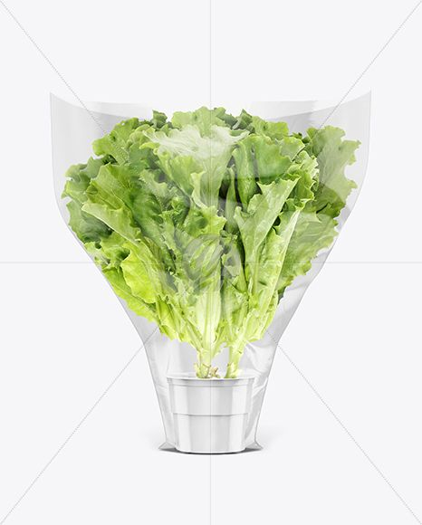 Download Plastic Bag With Salad Mockup In Bag Sack Mockups On Yellow Images Object Mockups Mockup Free Psd Mockup Free Packaging Mockup