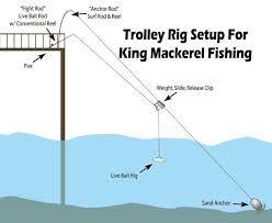 Afbeeldingsresultaat Voor How To Rig For Saltwater Pier Fishing Pier Fishing Saltwater Fishing Ocean Fishing