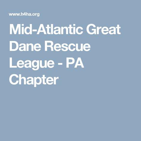 Mid Atlantic Great Dane Rescue League Pa Chapter Great Dane