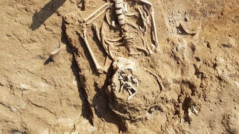 11th-century bodies near Meerut give new archaeological