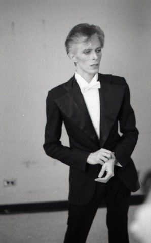 David Bowie Skinny : david, bowie, skinny, E5dc7d35f81d659ac772f5d5067324bf--david-bowie-the-thin-white-duke, David, Bowie, Fashion,, Bowie,, Starman