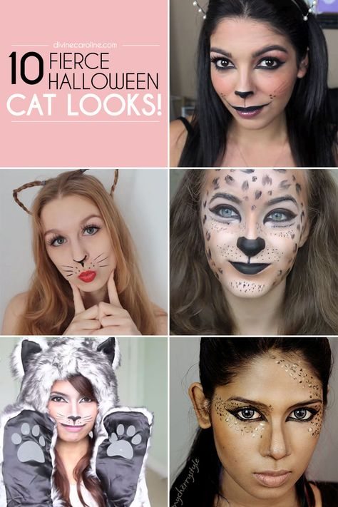 10 Fierce Halloween Cat Makeup Ideas