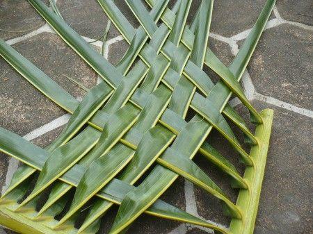 Weaving Coconut Leaf Plates Coconut Leaves Leaf Plates Weaving