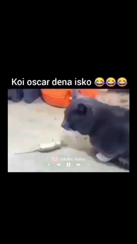 Koi Oscar dena isko