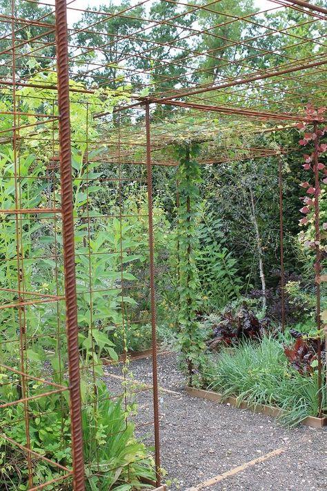 S Amenager Un Espace Pour Plantes Grimpantes Avec Du Fer A Beton