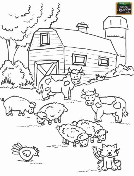 24 Farm Animals Coloring Page In 2020 Farm Animal Coloring