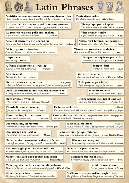 A poster showing a range of famous Latin phrases with translations. Perfect for anyone interested in Latin or famous phrases. This makes a great poster for the wall or to study from on the table.Printed onto paper and finished with a durable gloss laminate.