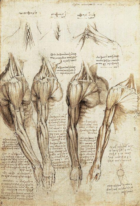 Top quotes by Leonardo da Vinci-https://s-media-cache-ak0.pinimg.com/474x/58/be/f7/58bef71c04d6d2261f030ba146e42f7a.jpg