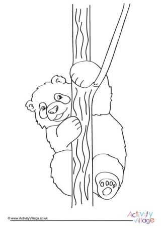 Panda Colouring Page 2 Coloring Pages Panda Color