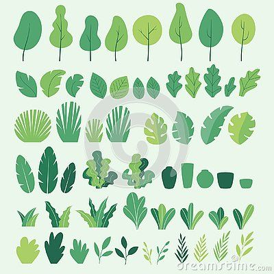 Vector Set Of Flat Illustrations Of Plants, Trees, Leaves, Branches, Bushes And Pots Stock Vector - Illustration of flower, decoration: 150388959