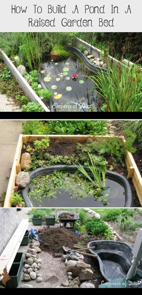 Building a small garden pond in a raised garden bed is a good solution when you need better accessibility or cannot dig into the ground. #backyardgardeningideas #fishpond #empressofdirt       A Mini Pool is quickly set up, often surprisingly cheap and the suitable, uncomplicated filter technology ensures unadulterated bathing fun. Because they take up little space for themselves, the Whirlpool or mini plunge pool even fit into small gardens, but... #Bed #Build #Garden #Pinokyo #Pond #Raised