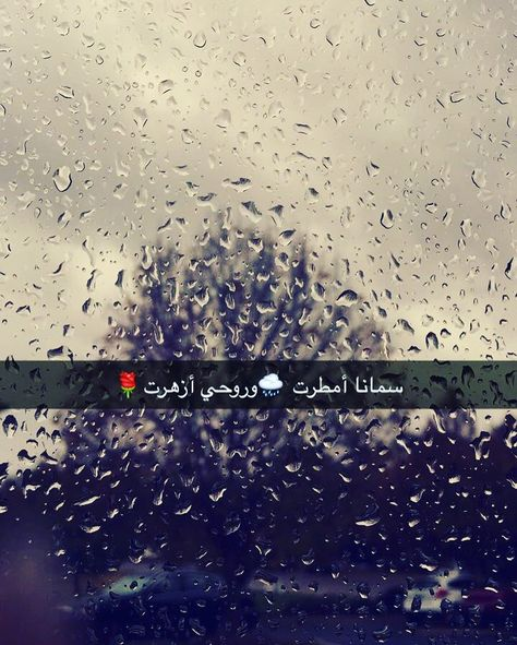 Love Rain Book Quotes Arabic Quotes