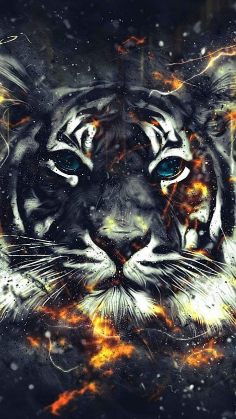 King Of Fire Iphone Wallpaper Tiger Artwork Iphone Wallpaper Cat Tiger Art