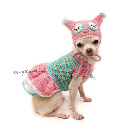 ab51fe81f492 Owl Dog Costume, Owl Dog Hat, Pink Turquoise Owl Dog Clothes, Chihuahua  Clothes, Personalized Dog Cl