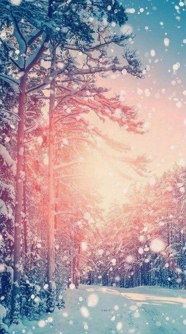 40 Desktop Wallpapers Background Image Dailypinmag Iphone Wallpaper Winter Winter Wallpaper Christmas Wallpaper Backgrounds