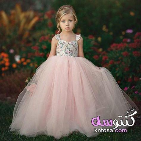 فساتين اطفال منفوشه بالتل فساتين اطفال افراح فساتين سهرة للاطفال فخمة فساتين اطفال سواريه Kntosa C Girl Princess Dress Flower Girl Dresses Princess Dress Kids