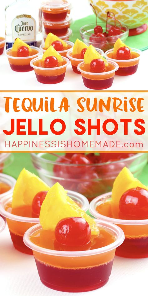 Tequila Sunrise Jello Shot Recipe Tequila Sunrise Jello Shot Recipe: These delicious tequila sunrise Jello shots are the perfect cocktail for backyard summer bbqs and pool parties! Get this yummy jello shot recipe and be the hit of the party this summer! Jello Shots Recept, Yummy Jello Shots, Best Jello Shots, Making Jello Shots, Jello Pudding Shots, Jello Shot Recipes, Alcohol Drink Recipes, Tequila Jello Shots, Alcohol Jello Shots