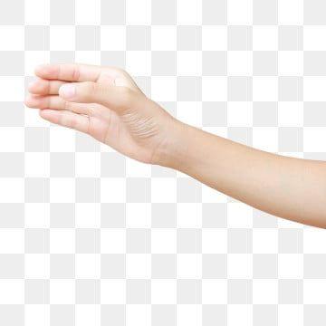 Mulher Linda Mulher Bonita Bonita Bonita Mulher Bonito Imagem Png E Vetor Para Download Gratuito Hand Holding Something Fashion Clipart Pop Art Illustration