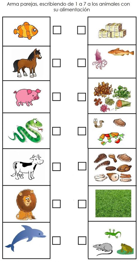 Tipos de alimentación animal ficha interactiva y descargable. Puedes hacer los ejercicios online o descargar la ficha como pdf.
