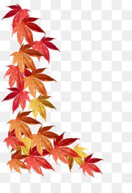 Autumn Leaves Png Autumn Leaves Transparent Clipart Free Download Download Autumn Hand Painted Autumn Leaves Autumn Leaf Color Autumn Leaves Leaf Border