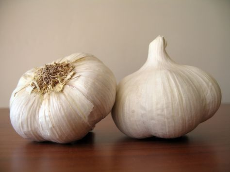 #Garlic is like a boon for #diabetics. Besides being useful in decreasing #cholesterol it also lowers #blood sugar.http://bit.ly/TWxcpf