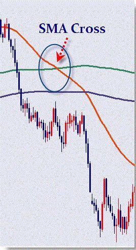 50 And 200 Sma Daily System Learn Forex Trading Forex Trading