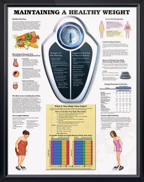 Pierderea în greutate de sațietate precoce. Meniu cont utilizator