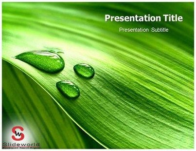 Nature Powerpoint Templates  BesikEightyCo