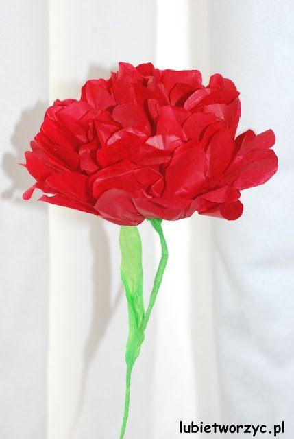 Kwiaty Z Bibuly In 2021 Handcraft Flowers Crafts