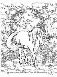 Kleurplaten Paarden Gratis.30 Kleurplaten Paarden Tip Gratis Te Printen